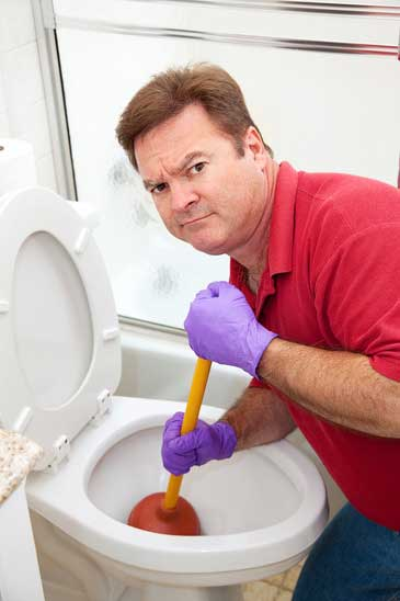 Tips for Purchasing the Right Toilet
